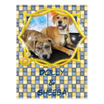 Sheeba y carro - Labrador y mezcla de Pitbull Postal