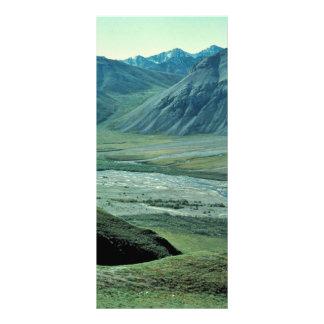 Sheenjek River Valley con las ovejas de dall Diseño De Tarjeta Publicitaria