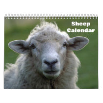 Sheep 2022 calendar