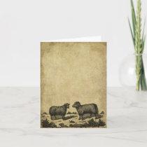 Sheep & A Ram- Prim Little Note Cards