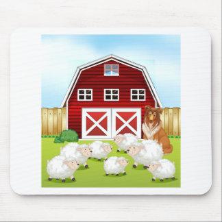 Sheep and barn mouse pad