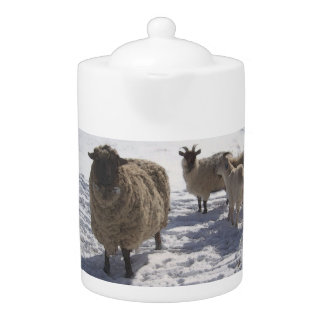 Sheep and Goats in April Snow Teapot