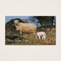 Sheep and lamb business card
