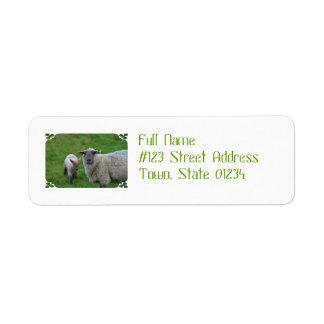 Sheep and Lamb Custom Return Address Labels