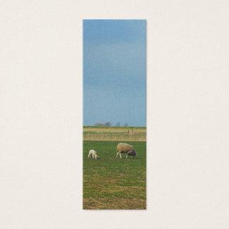 Sheep and Lamb Landscape Photo Bookmark Gift Mini Business Card