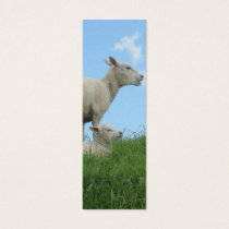 Sheep and Lamb Photo Bookmark Gift Mini Business Card