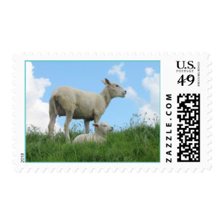 Sheep and Little Lamb Spring Postage Stamps