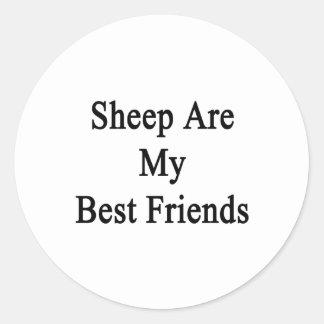 Sheep Are My Best Friends Round Stickers