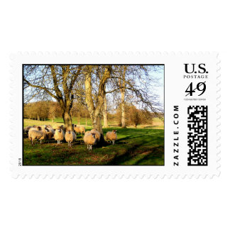 Sheep at Easter Postage
