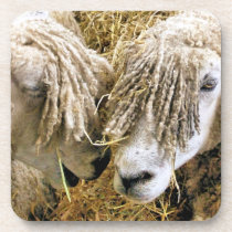 SHEEP BEVERAGE COASTER