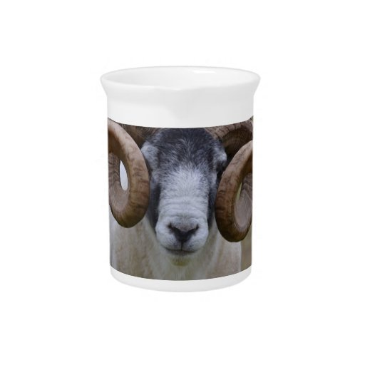 Sheep Beverage Pitchers