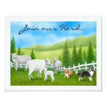 Sheep & Border Collies Invitation