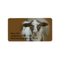 Sheep - Brown Spotted Lamb Label