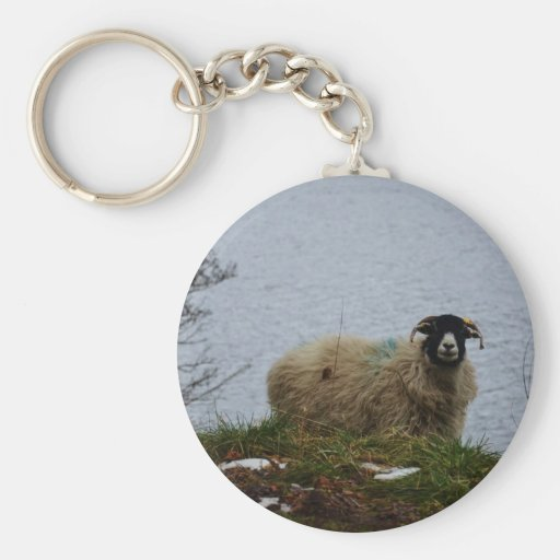 Sheep by the water keychain