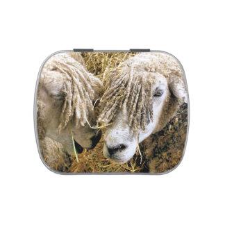 SHEEP CANDY TIN