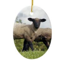 sheep ceramic ornament
