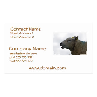 Sheep Chomping on Hay Business Card