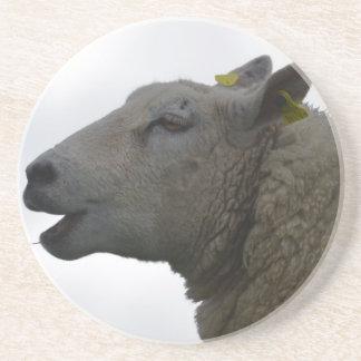 Sheep Chomping on Hay Drink Coasters