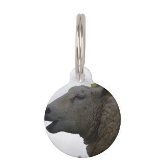 Sheep Chomping on Hay Pet Name Tag