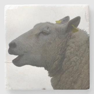Sheep Chomping on Hay Stone Beverage Coaster