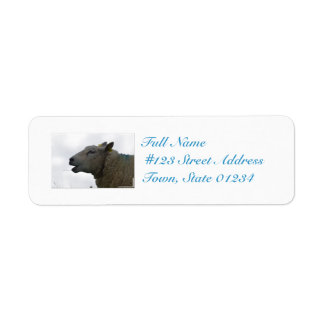 Sheep Chomping on Hay Return Address Labels