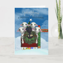 Sheep Christmas Card - Black Sheep Holiday Card