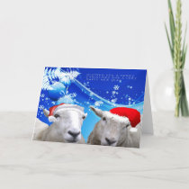 Sheep Christmas card.jpg Holiday Card