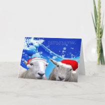 Sheep Christmas card.jpg Holiday Card
