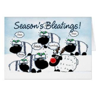 Sheep Christmas Card - Seaon's Bleetings