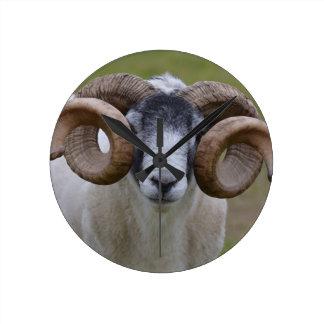 Sheep Round Wallclocks