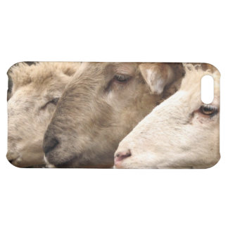 sheep cover for iPhone 5C