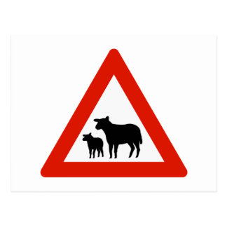 Sheep Crossing, Traffic Sign, Norway Postcard