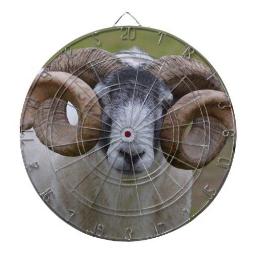 Sheep Dartboard