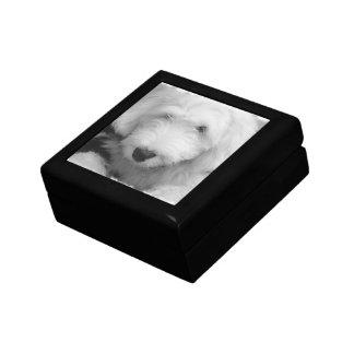 Sheep Dog  Gift Box
