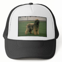 Sheep Dog Picture Trucker Hat