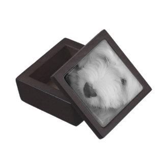 Sheep Dog  Premium Gift Box