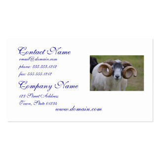 Sheep Double-Sided Standard Business Cards (Pack Of 100)