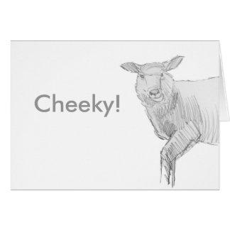 sheep drawing sketch card