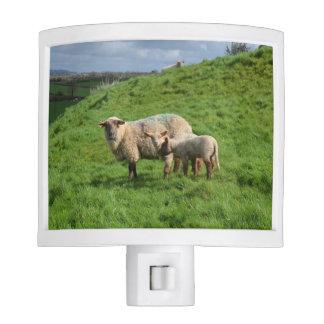 Sheep Family Night Light