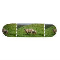 Sheep Family Skateboard Deck
