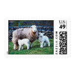 Sheep Family Stamps