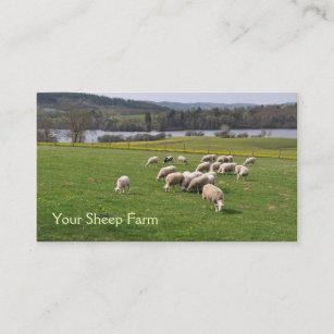 Farm business cards templates zazzle sheep farm business card colourmoves