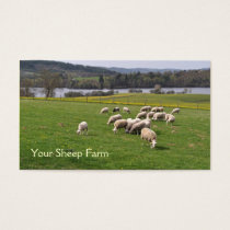 Sheep farm business card