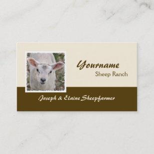 Sheep farm business cards zazzle sheep farm business card colourmoves