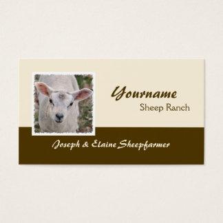 Sheep farm business card