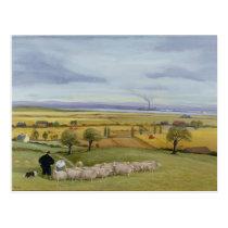 Sheep Farmer Isle of Sheppey Postcard