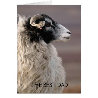 Sheep Fathers Day Card