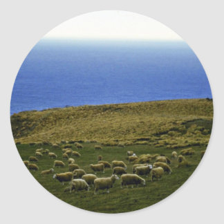 Sheep Flock, Christchurch, South Island Classic Round Sticker