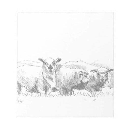 Sheep Flock Drawing Memo Notepad