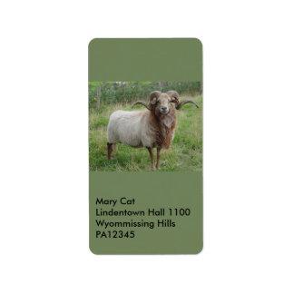 Sheep - Fox colored Ram Label